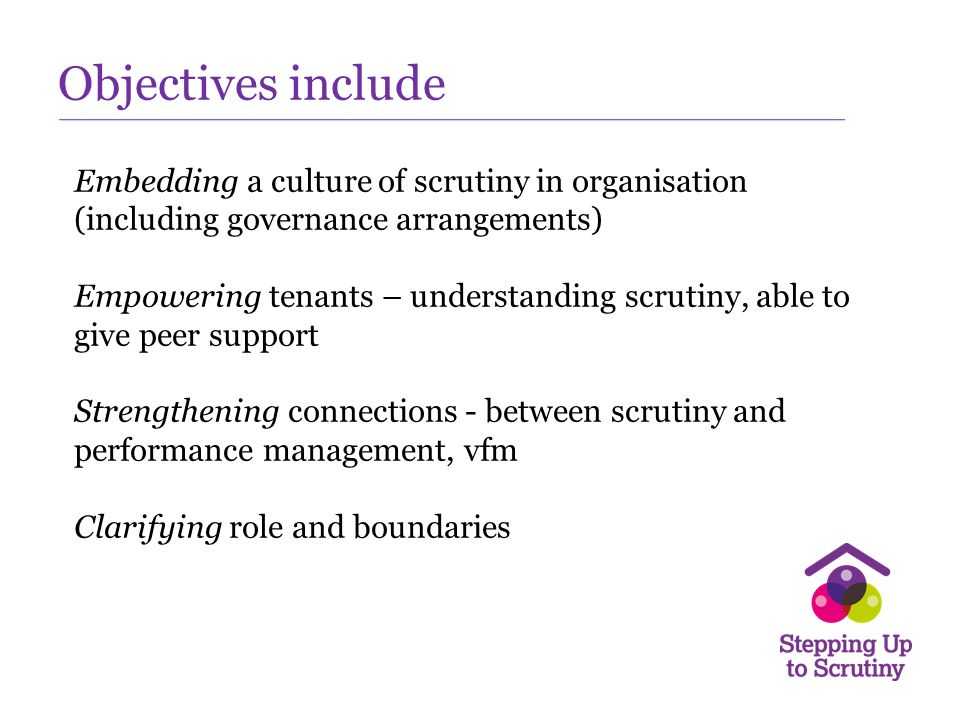 Objectives include Embedding a culture of scrutiny in organisation (including governance arrangements)