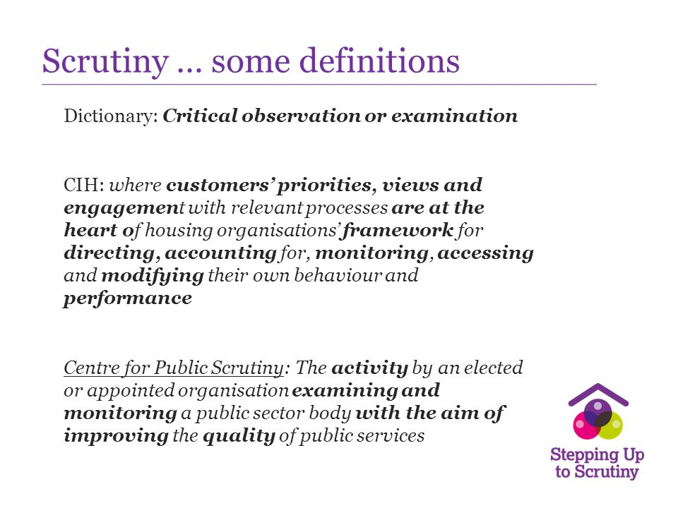 Scrutiny … some definitions