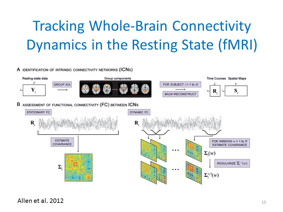 Tracking Whole-Brain Connectivity Dynamics in the Resting State (fMRI)