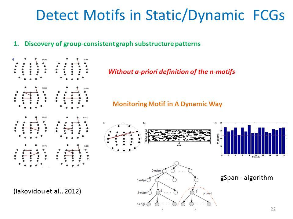 Detect Motifs in Static/Dynamic FCGs