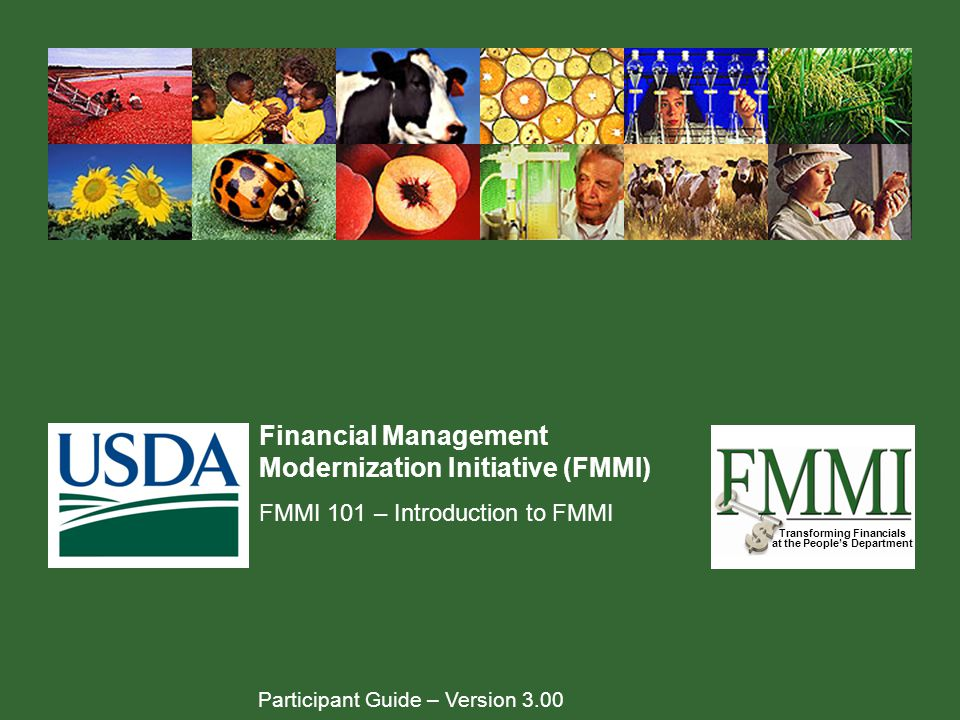 Financial Management Modernization Initiative (FMMI)