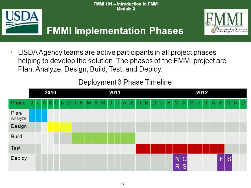 FMMI Implementation Phases