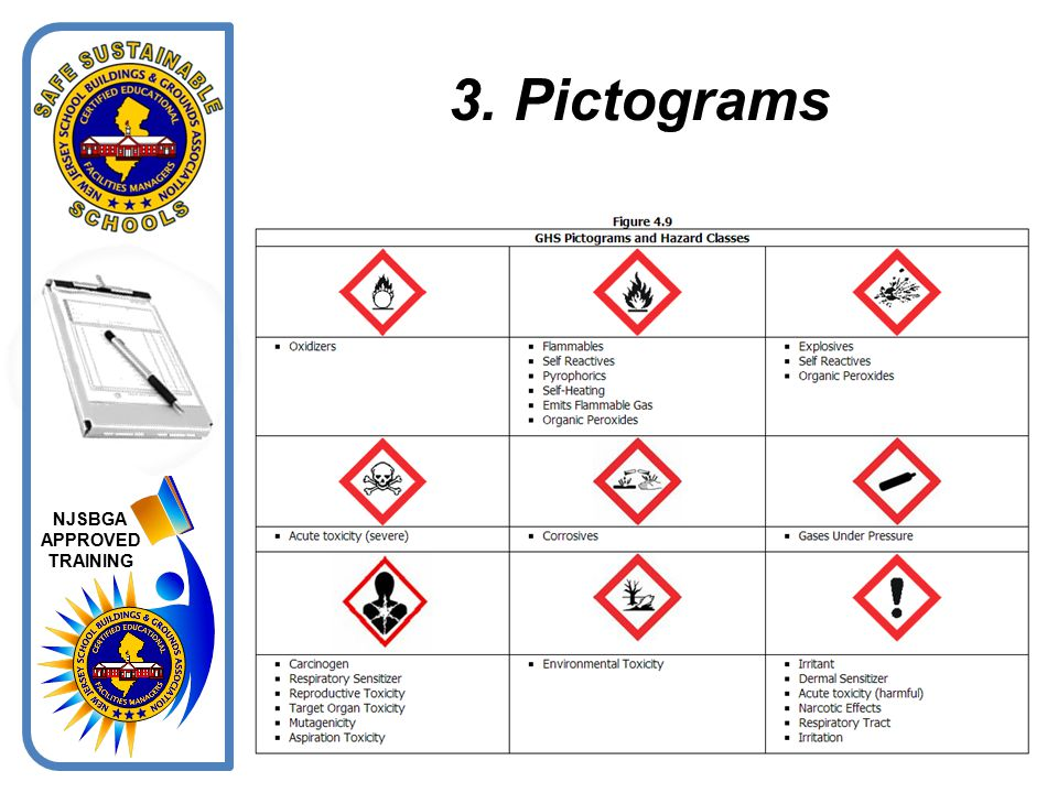 3. Pictograms