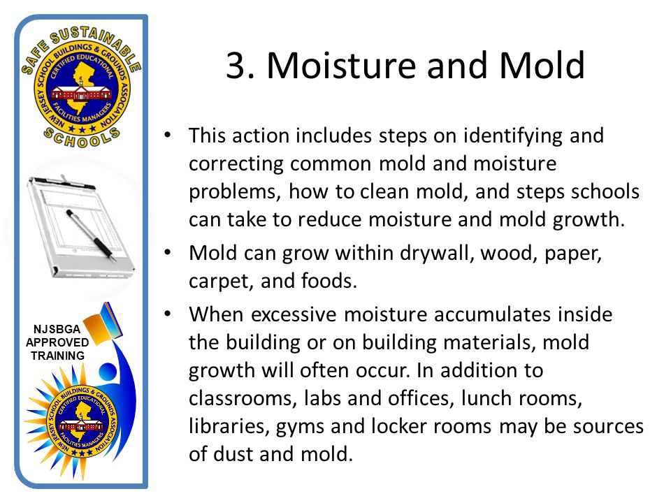 3. Moisture and Mold