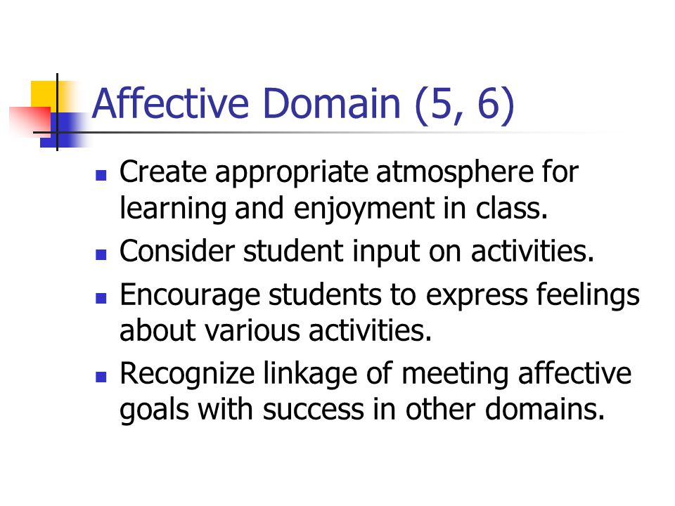 Affective Domain (5, 6) Create appropriate atmosphere for learning and enjoyment in class. Consider student input on activities.