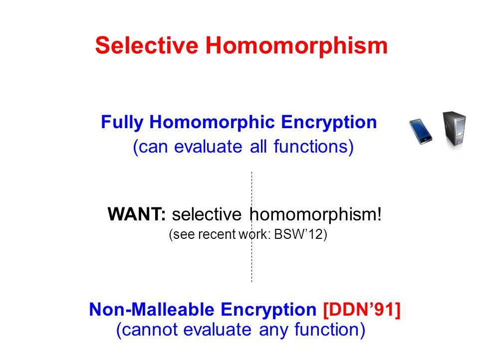Selective Homomorphism