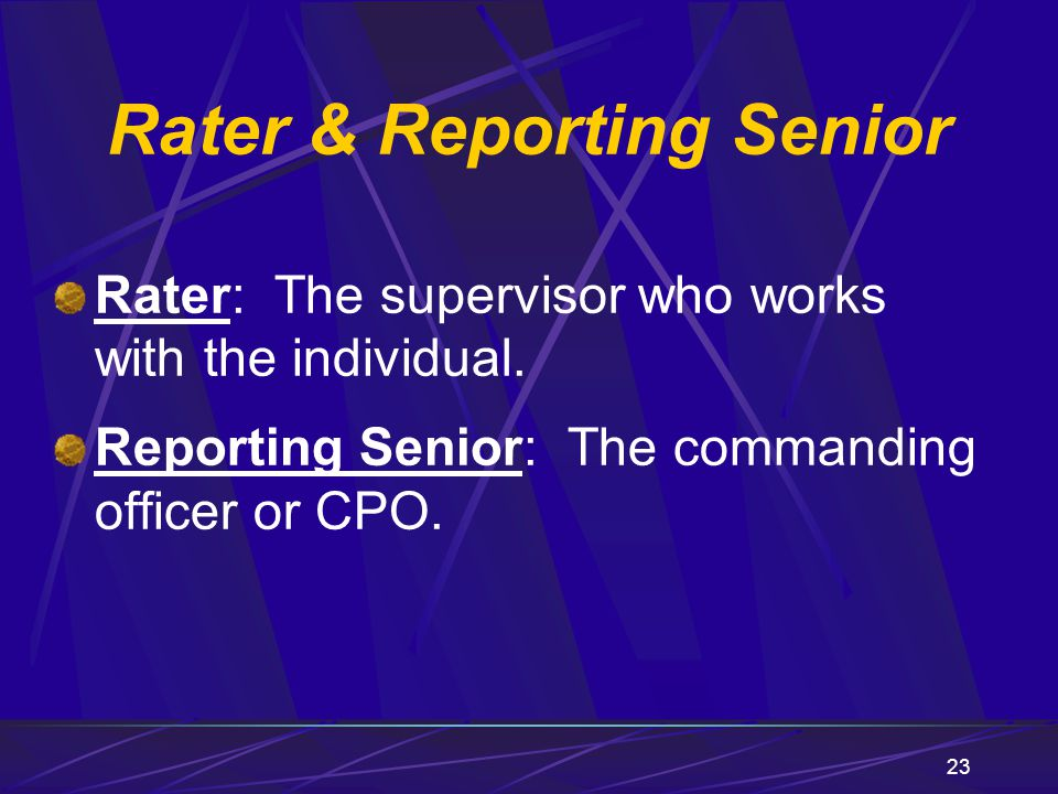 Rater & Reporting Senior
