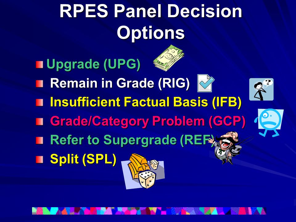 RPES Panel Decision Options