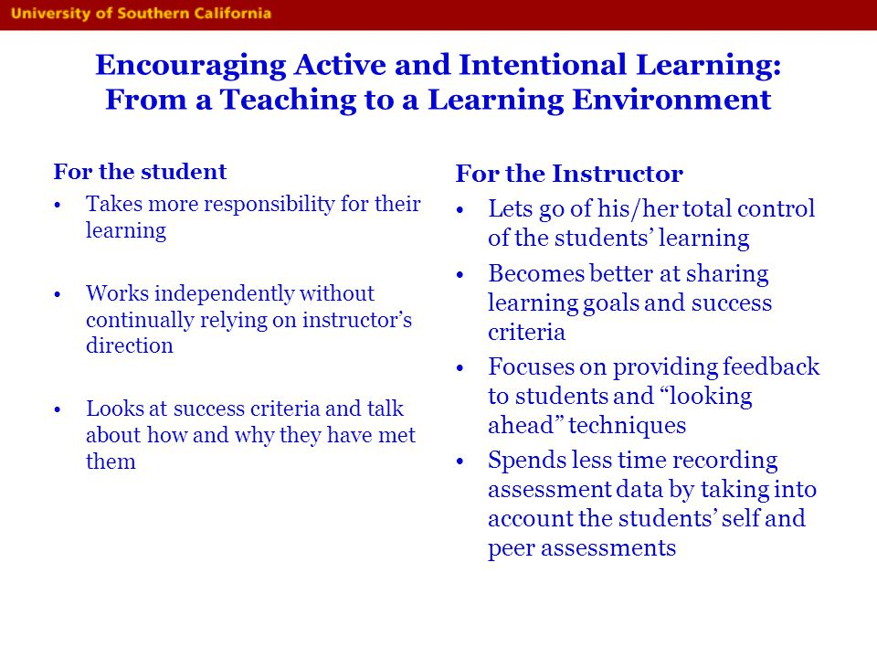 Encouraging Active and Intentional Learning: From a Teaching to a Learning Environment