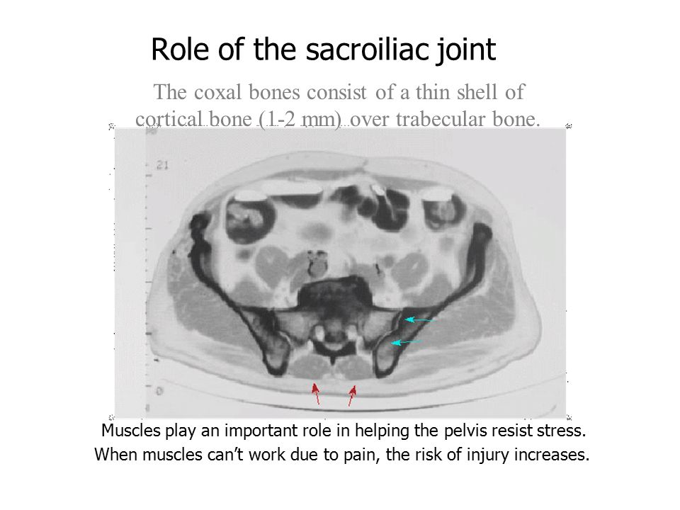 Role of the sacroiliac joint