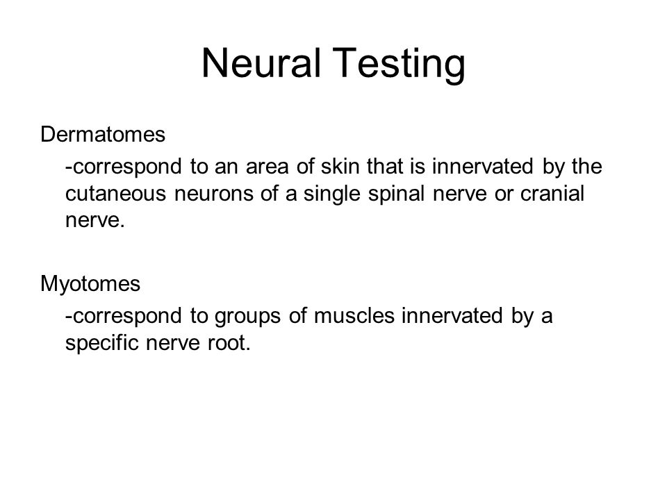 Neural Testing Dermatomes
