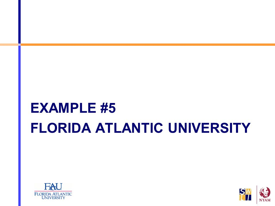 EXAMPLE #5 FLORIDA ATLANTIC UNIVERSITY