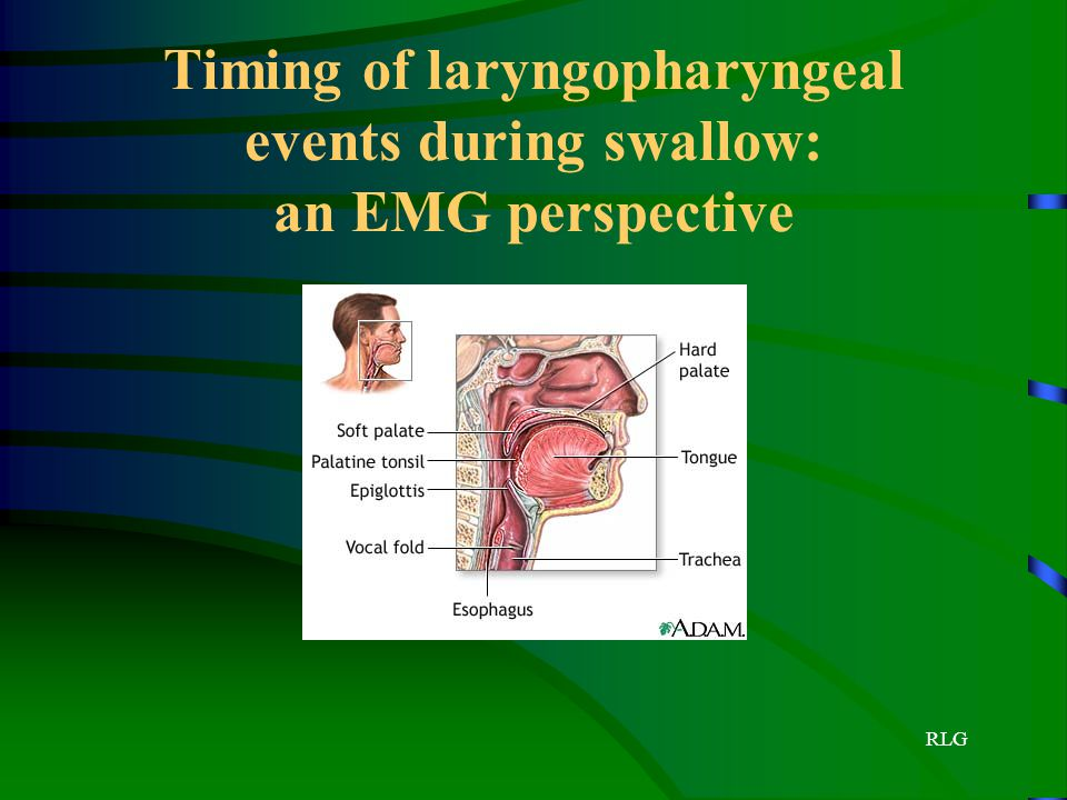 Timing of laryngopharyngeal events during swallow: an EMG perspective