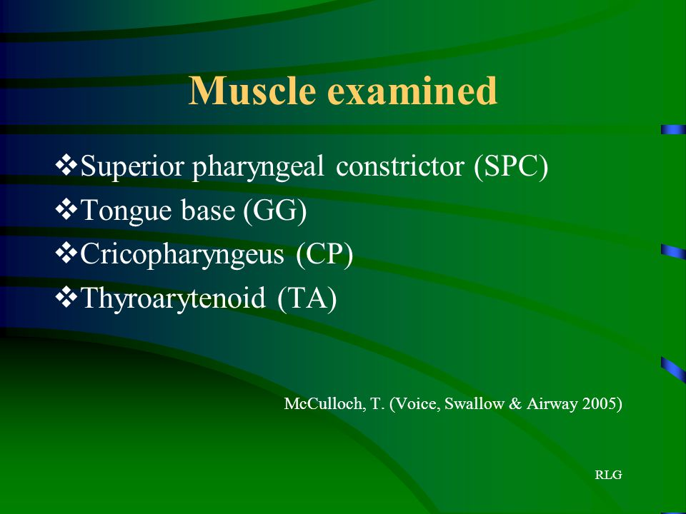 Muscle examined Superior pharyngeal constrictor (SPC) Tongue base (GG)