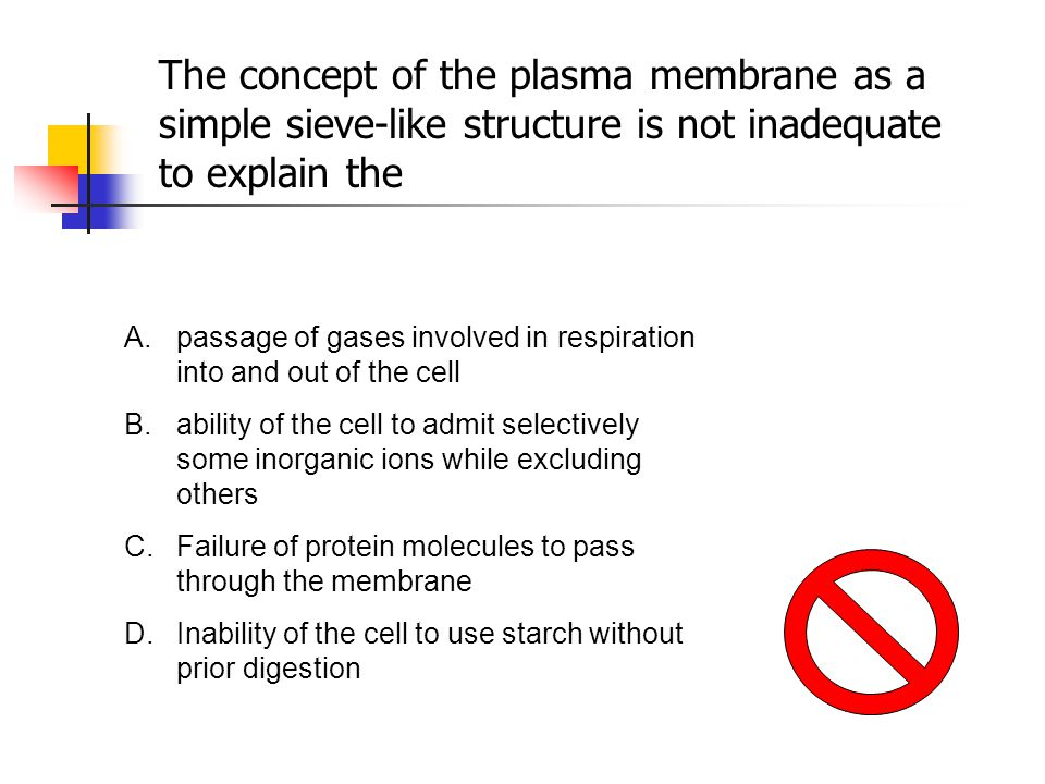 The concept of the plasma membrane as a simple sieve-like structure is not inadequate to explain the
