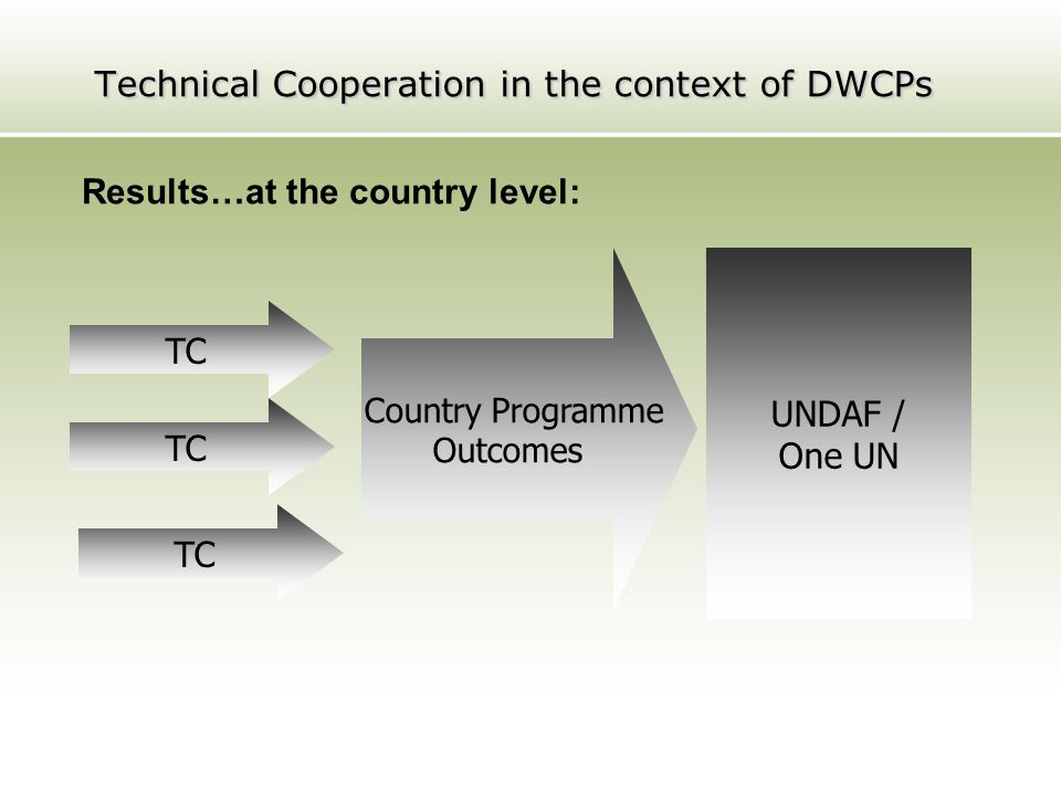 Technical Cooperation in the context of DWCPs
