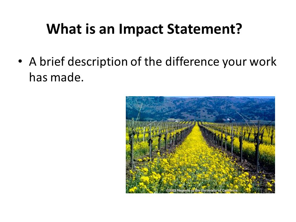What is an Impact Statement