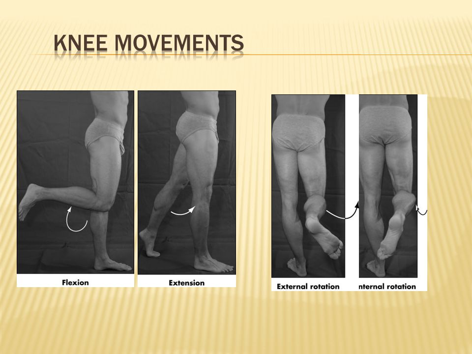 Knee Movements