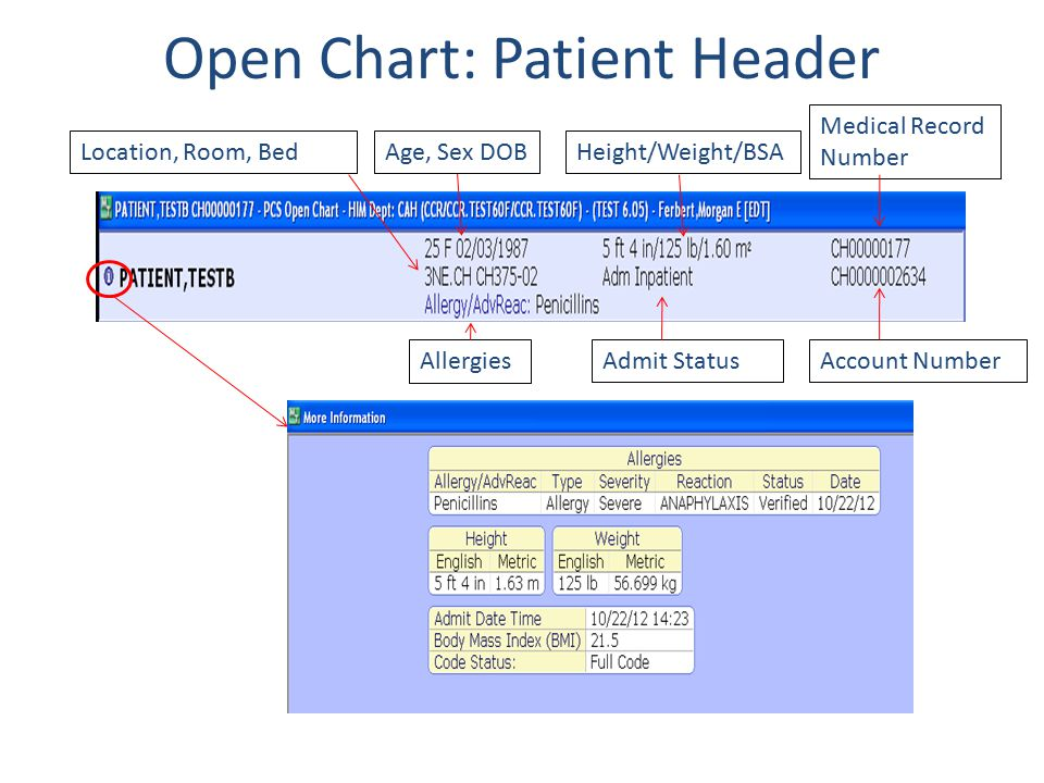 Open Chart: Patient Header
