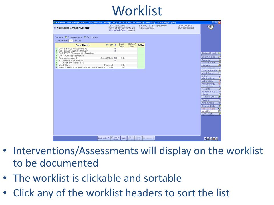 Worklist Interventions/Assessments will display on the worklist to be documented. The worklist is clickable and sortable.