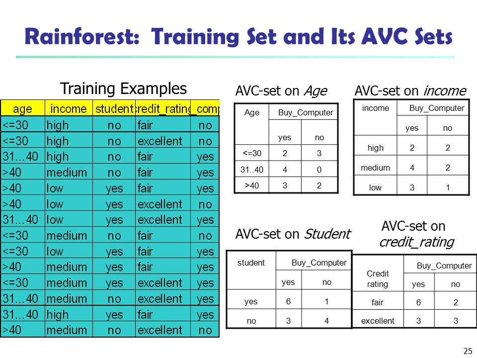 Rainforest: Training Set and Its AVC Sets