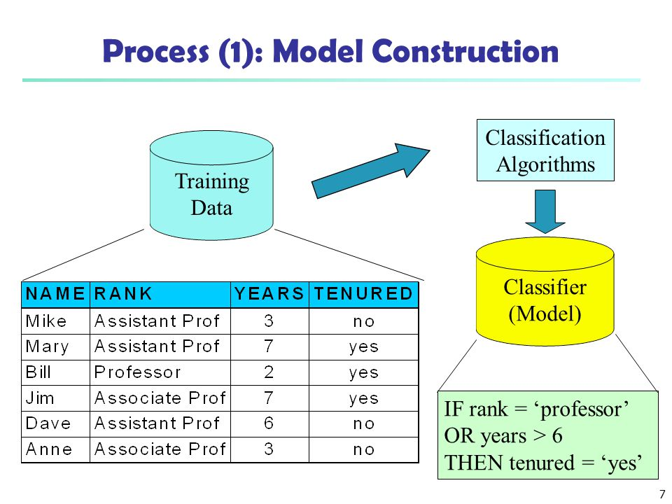 Process (1): Model Construction