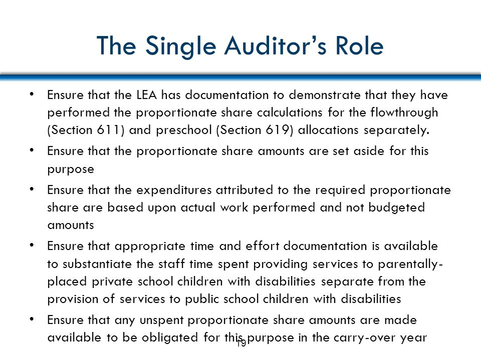 The Single Auditor's Role