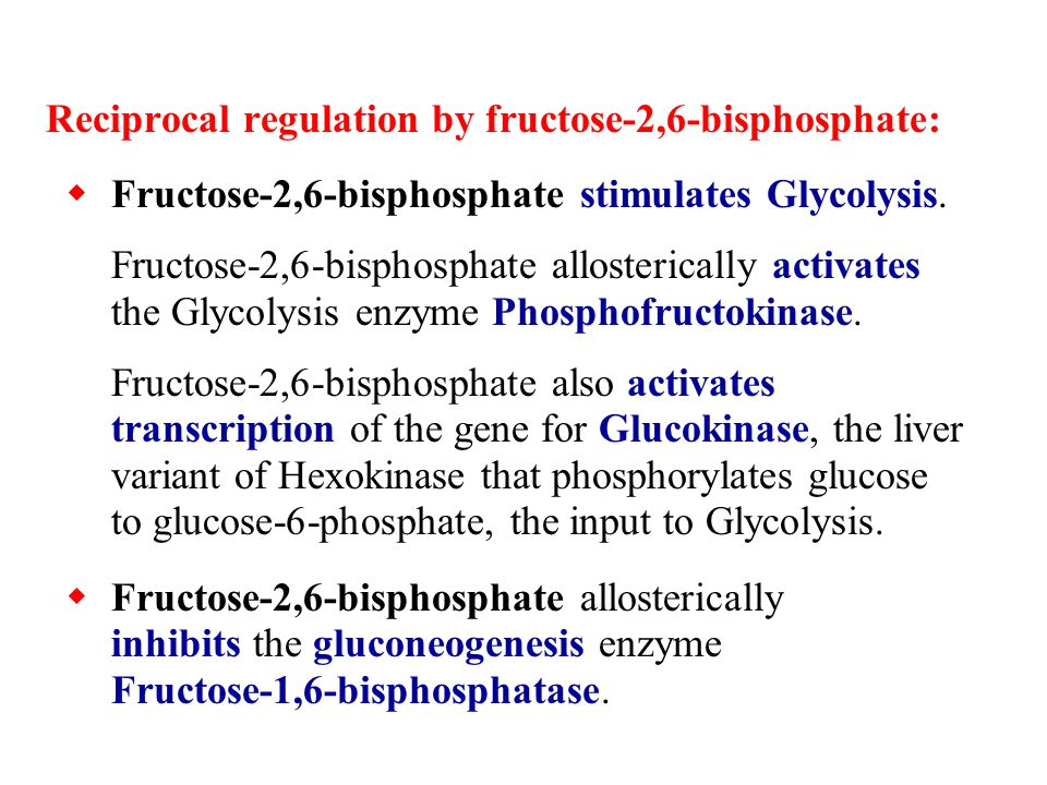 Reciprocal regulation by fructose-2,6-bisphosphate: