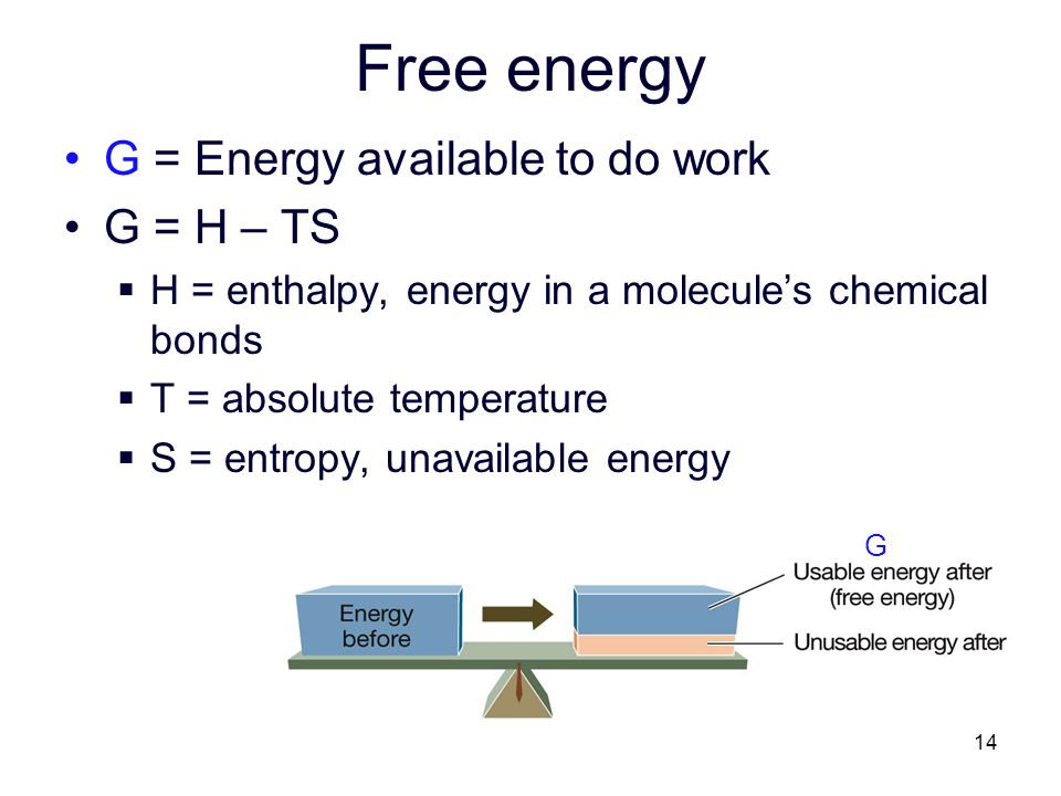 Free energy G = Energy available to do work G = H – TS
