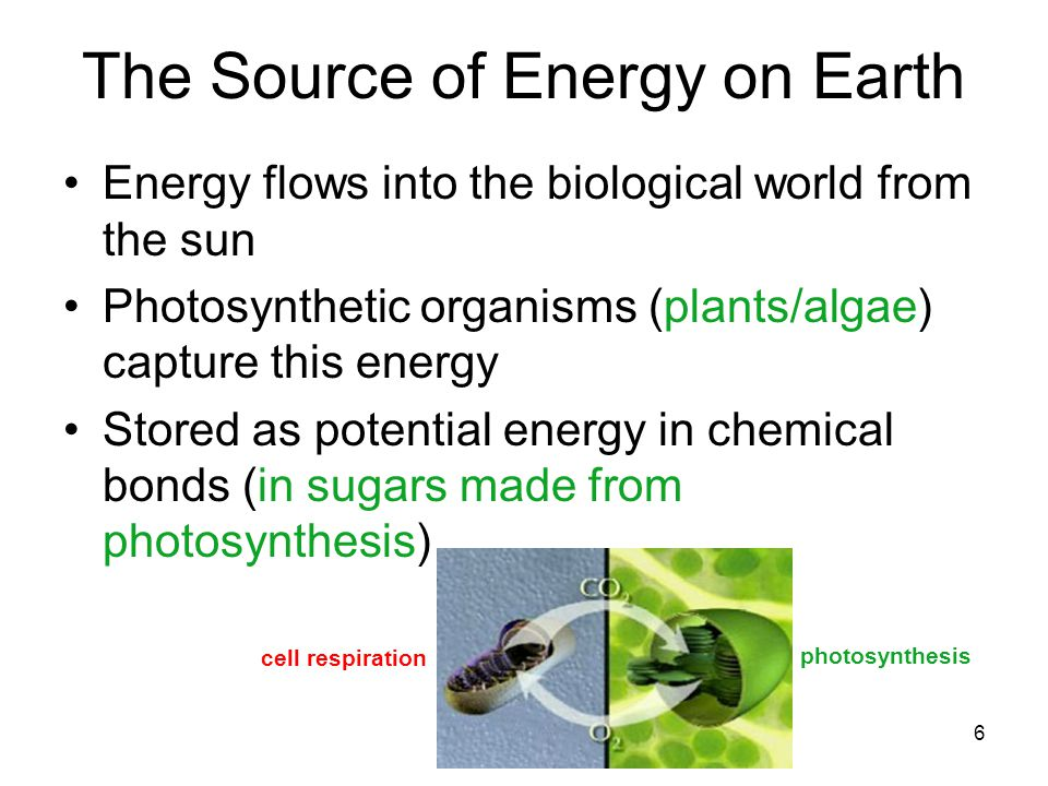The Source of Energy on Earth