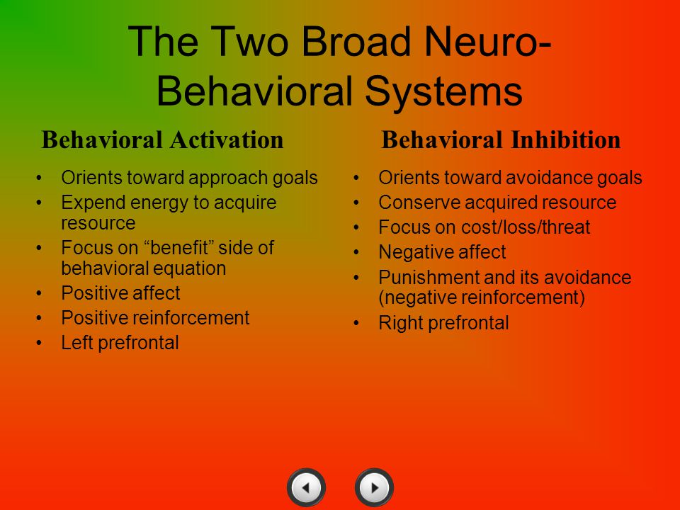 The Two Broad Neuro-Behavioral Systems