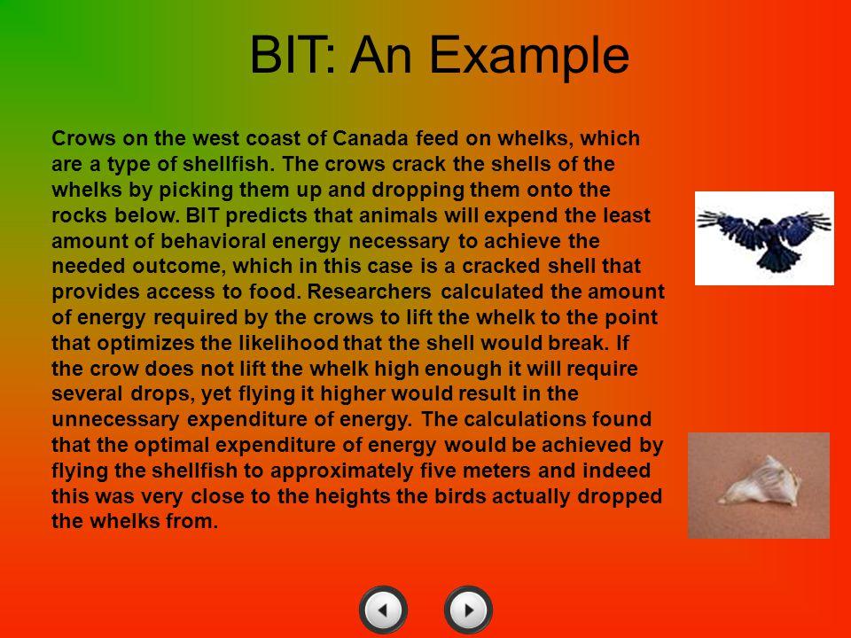 BIT: An Example