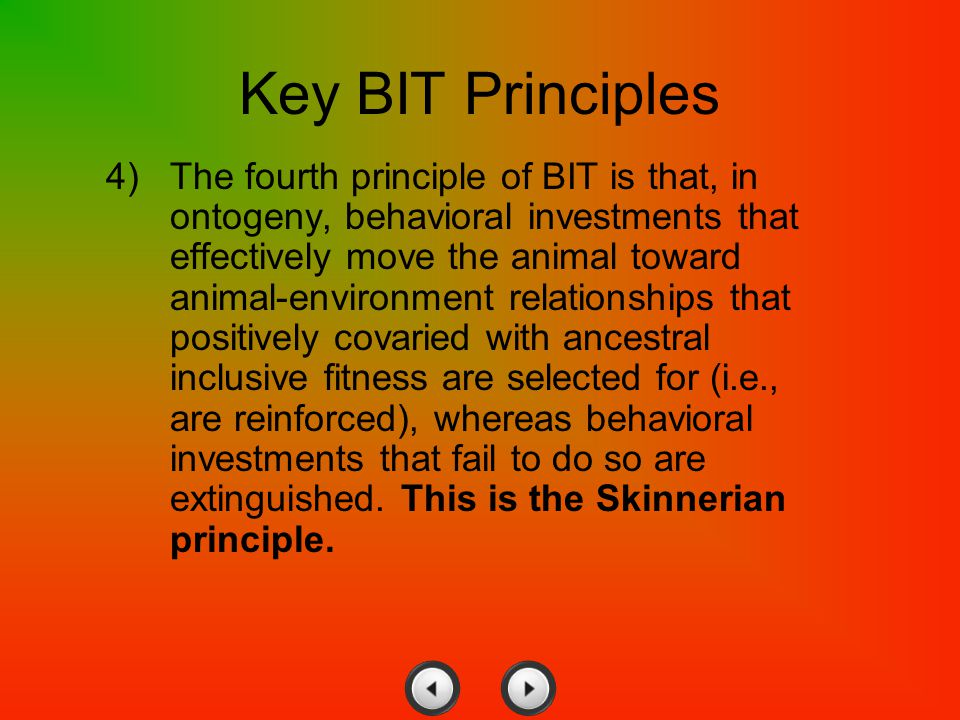 Key BIT Principles
