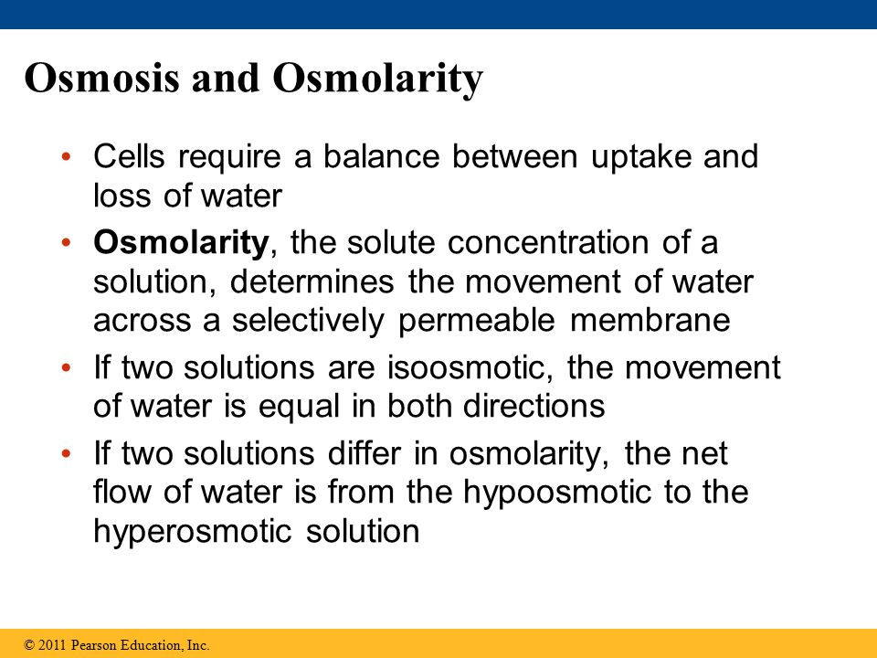 Osmosis and Osmolarity
