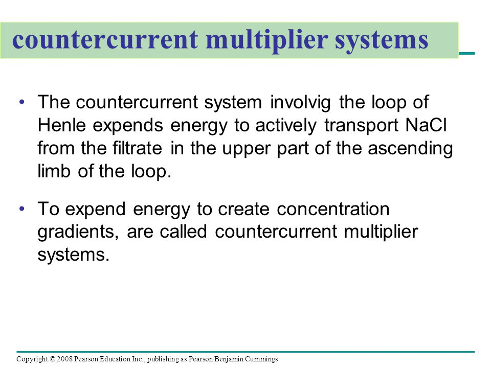 countercurrent multiplier systems