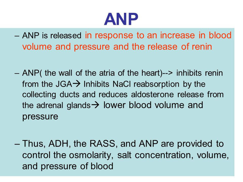 ANP ANP is released in response to an increase in blood volume and pressure and the release of renin.