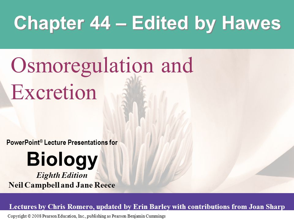 Chapter 44 – Edited by Hawes
