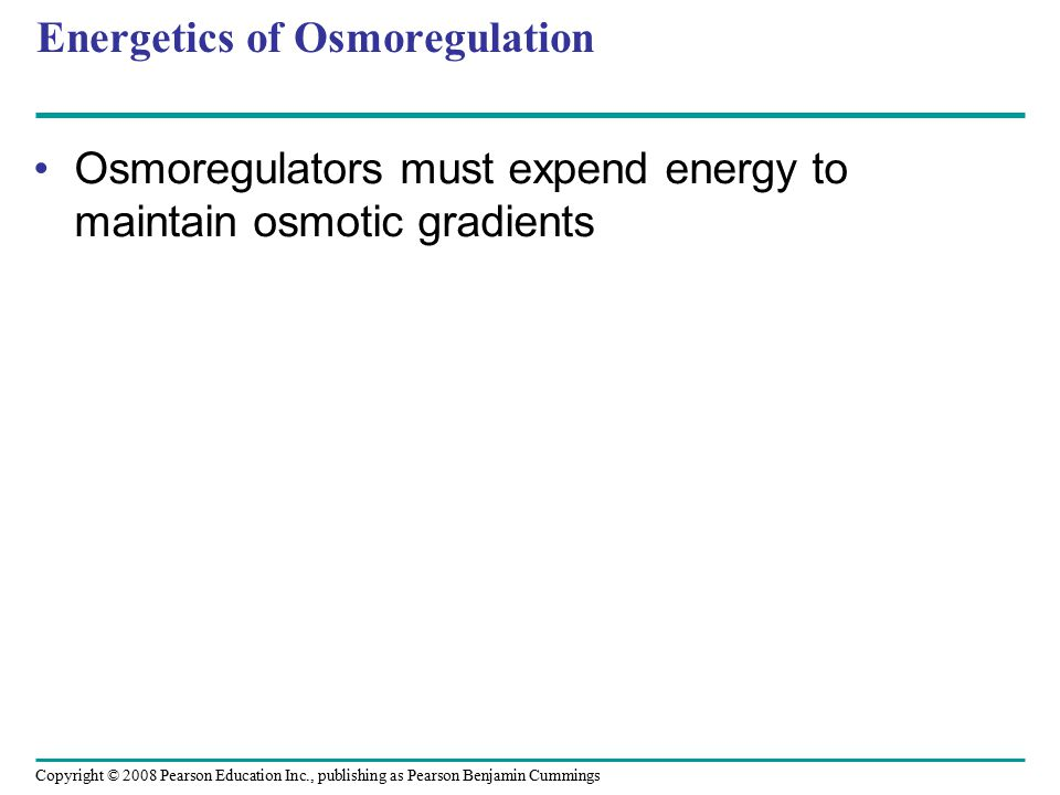 Energetics of Osmoregulation