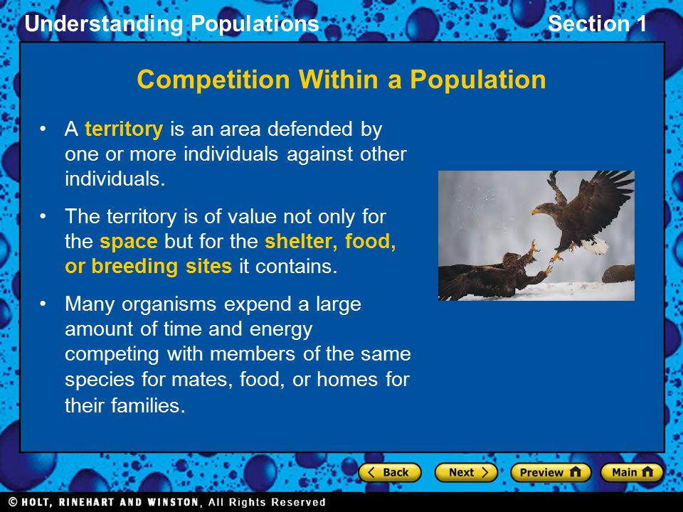 Competition Within a Population