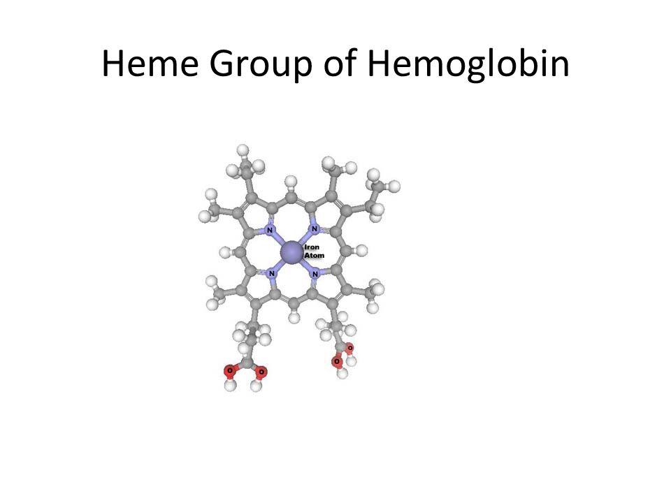 Heme Group of Hemoglobin