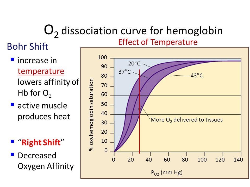 O2 dissociation curve for hemoglobin