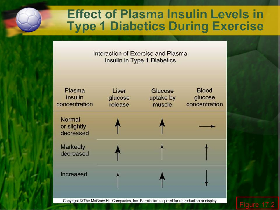 Effect of Plasma Insulin Levels in Type 1 Diabetics During Exercise