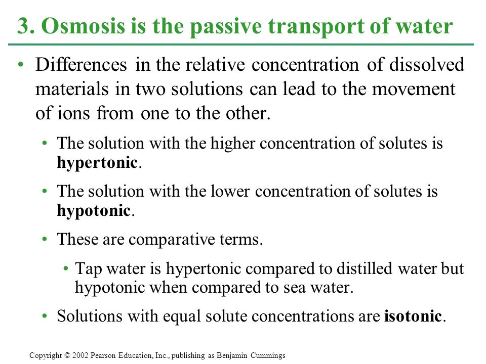 3. Osmosis is the passive transport of water