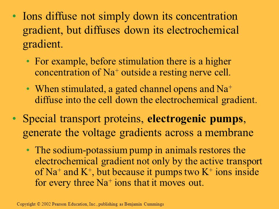 Ions diffuse not simply down its concentration gradient, but diffuses down its electrochemical gradient.