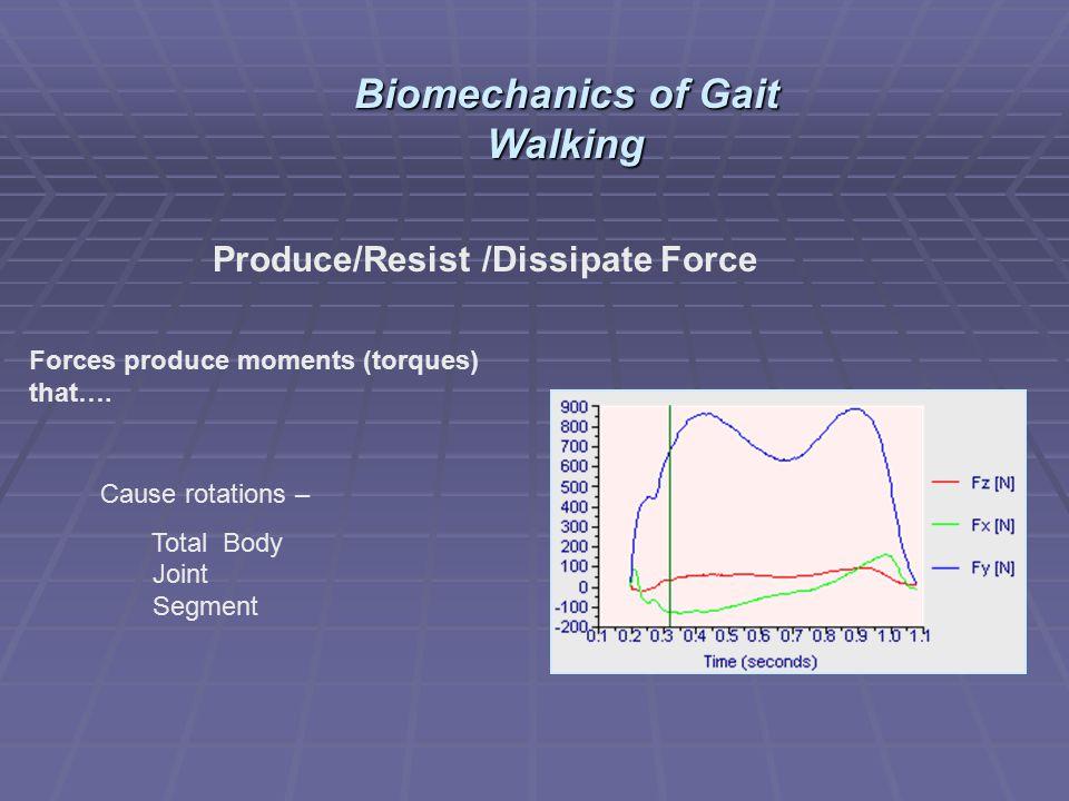 Biomechanics of Gait Walking Produce/Resist /Dissipate Force
