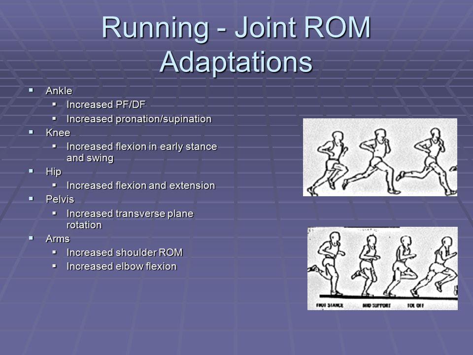 Running - Joint ROM Adaptations