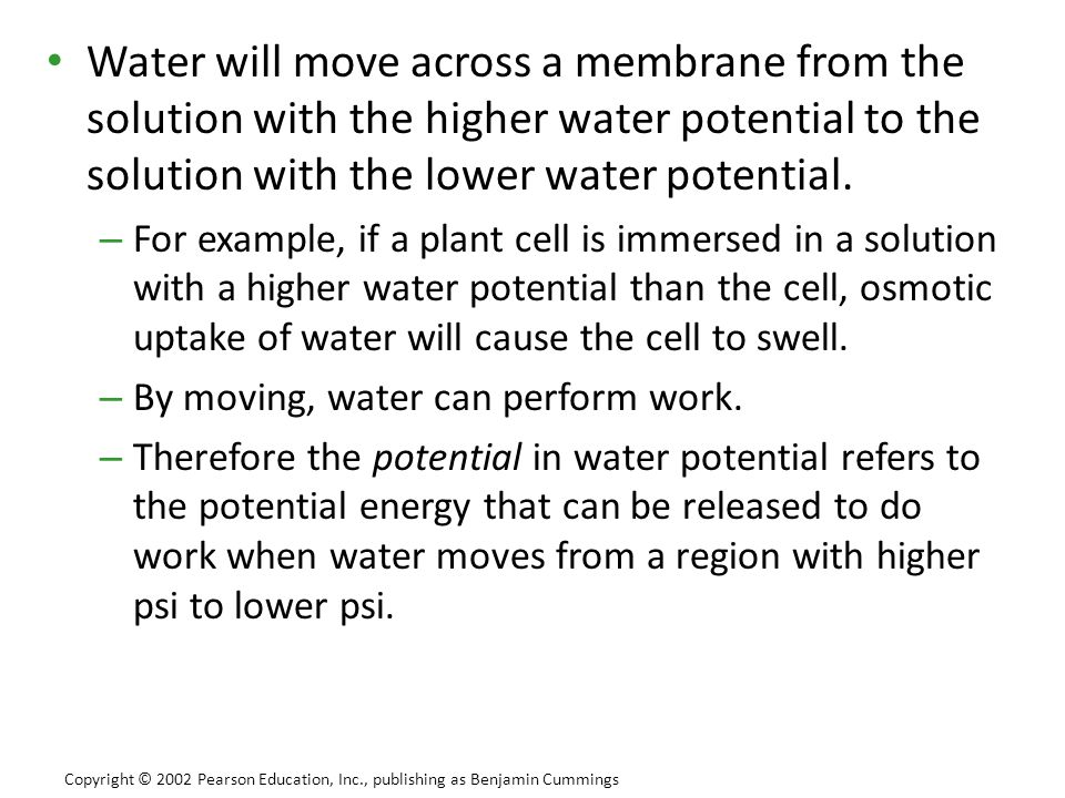 Water will move across a membrane from the solution with the higher water potential to the solution with the lower water potential.