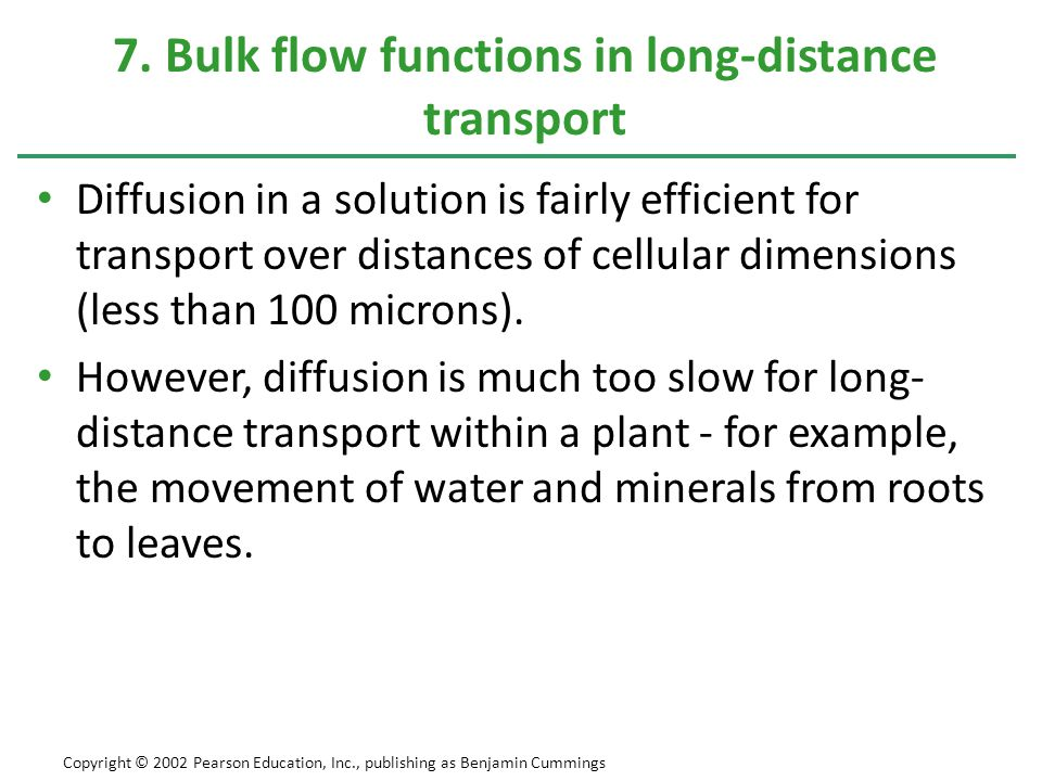 7. Bulk flow functions in long-distance transport