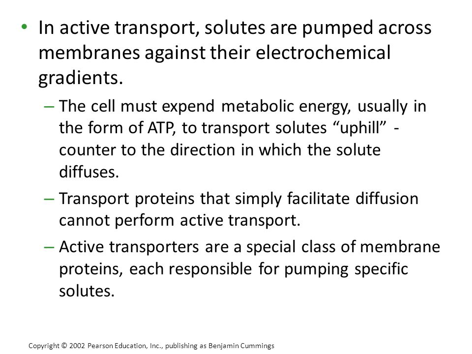 In active transport, solutes are pumped across membranes against their electrochemical gradients.