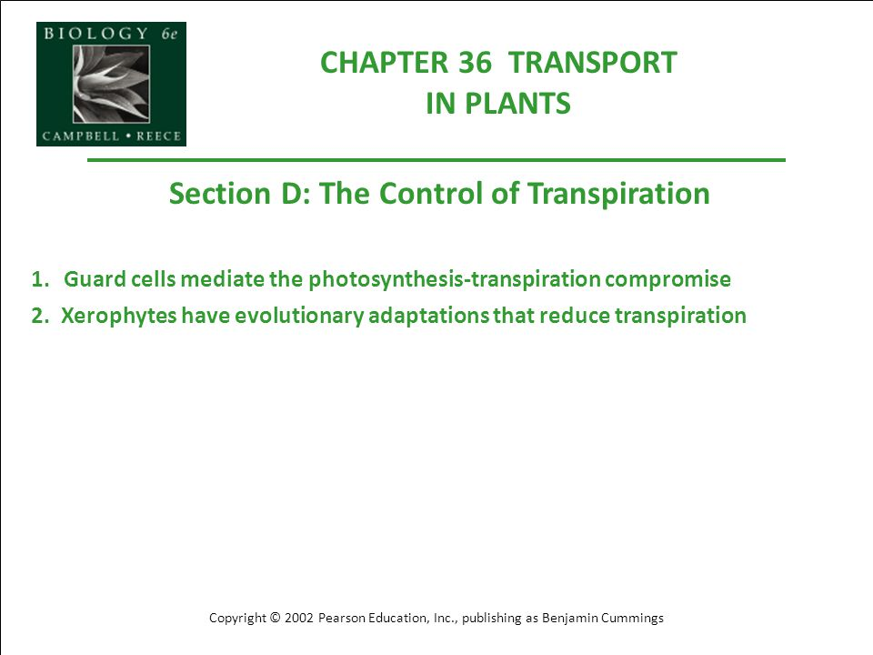 CHAPTER 36 TRANSPORT IN PLANTS Section D: The Control of Transpiration